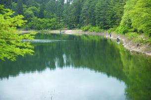 県民の森荒沼の写真素材 [FYI04497016]
