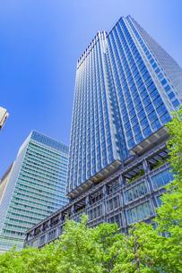 新緑の木立と高層ビルの写真素材 [FYI04497210]