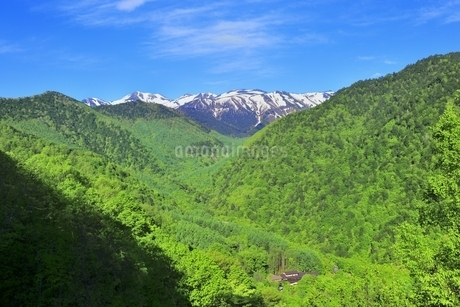 新緑の乗鞍岳と白骨温泉の写真素材 [FYI04497263]