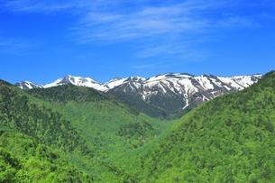 新緑の乗鞍岳の写真素材 [FYI04497264]