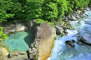 新緑の新穂高の湯の写真素材 [FYI04497265]