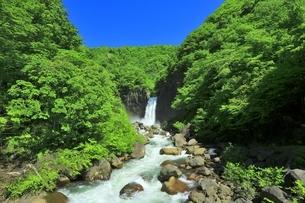 新緑の苗名滝の写真素材 [FYI04497268]