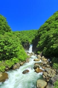 新緑の苗名滝の写真素材 [FYI04497269]