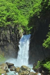 新緑の苗名滝の写真素材 [FYI04497284]