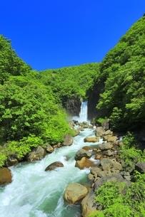 新緑の苗名滝の写真素材 [FYI04497286]