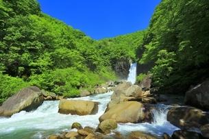 新緑の苗名滝の写真素材 [FYI04497288]
