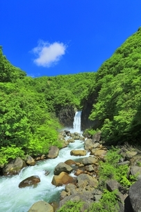 新緑の苗名滝の写真素材 [FYI04497294]
