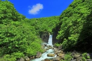 新緑の苗名滝の写真素材 [FYI04497295]