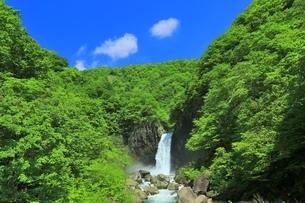新緑の苗名滝の写真素材 [FYI04497297]