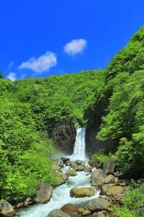 新緑の苗名滝の写真素材 [FYI04497298]
