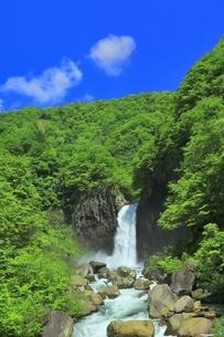 新緑の苗名滝の写真素材 [FYI04497299]