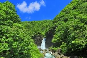 新緑の苗名滝の写真素材 [FYI04497303]