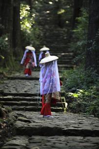 熊野古道の大門坂を平安衣装姿で歩く旅行者の写真素材 [FYI04497612]