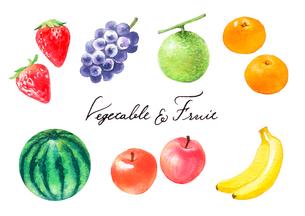 果物のイラスト素材 [FYI04497726]