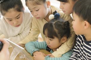 タブレットを見る子どもたちの写真素材 [FYI04498296]