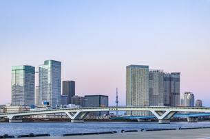 豊洲市場より望む東京ウォーターフロント夕景の写真素材 [FYI04499072]