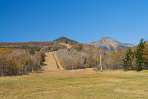 秋の高原 スキー場の写真素材 [FYI04499315]