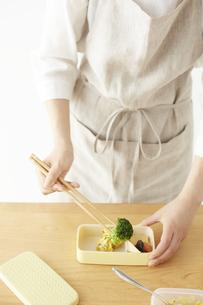 タッパーに入った食材を弁当箱に詰める女性の写真素材 [FYI04499810]