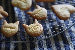 メッセージ入りクッキーの写真素材 [FYI04499827]