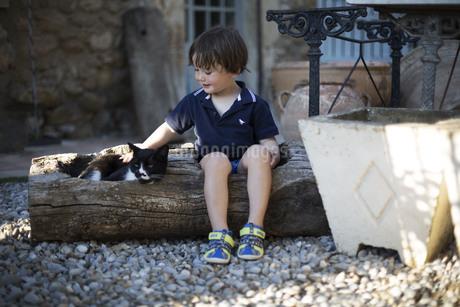 ハーフの幼児が屋外で黒白の猫を撫でている様子の写真素材 [FYI04500437]
