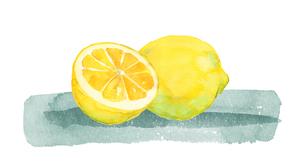レモン水彩画のイラスト素材 [FYI04500460]