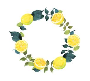 レモンのフレームのイラスト素材 [FYI04500464]