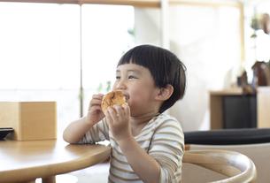 パンを食べる男の子の写真素材 [FYI04500606]