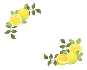 レモンのフレームのイラスト素材 [FYI04501330]