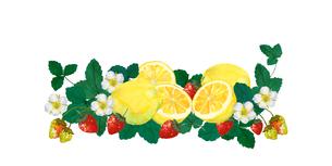 レモンと苺のイラスト素材 [FYI04501340]