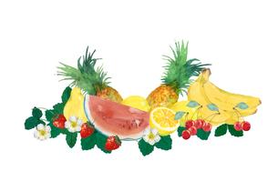 果物水彩画のイラスト素材 [FYI04501344]