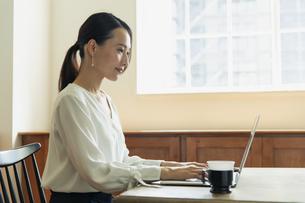パソコンで作業している20代女性の写真素材 [FYI04501469]