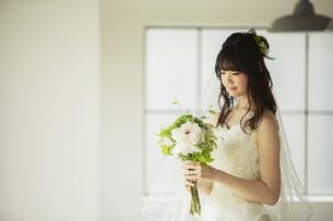 ドレス姿の20代女性の写真素材 [FYI04501789]