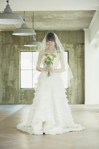 ドレス姿の20代女性の写真素材 [FYI04501843]