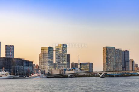 豊洲市場より望む東京ウォーターフロント夕景の写真素材 [FYI04501937]