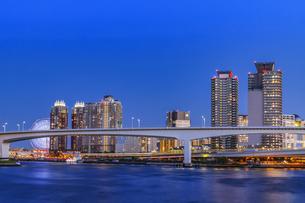 豊洲市場より望む東京ウォーターフロント夜景の写真素材 [FYI04501939]