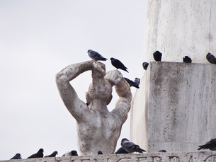 オランダアムステルダムの銅像と鳩   A statue and pigeons  in Amsterdamの写真素材 [FYI04501955]