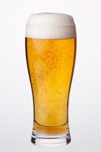 グラスビールの写真素材 [FYI04501957]