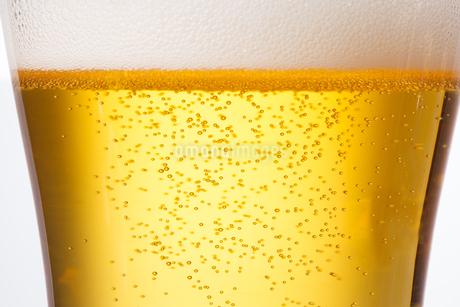 グラスビールの写真素材 [FYI04501962]