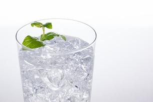 ソーダ水の写真素材 [FYI04501967]