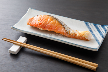 銀鮭の写真素材 [FYI04502001]