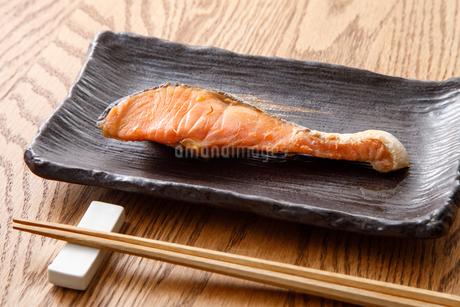 銀鮭の写真素材 [FYI04502011]