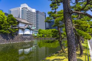 皇居の桜田巽櫓と大手町のビル街の写真素材 [FYI04502051]