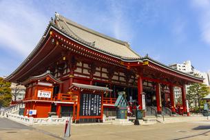 浅草寺の本堂の写真素材 [FYI04502078]