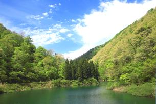 青空と新緑が美しい神岳ダムの風景の写真素材 [FYI04502090]