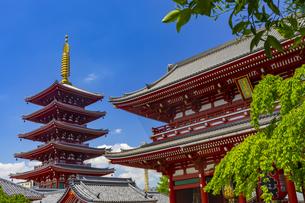 浅草寺の五重塔と宝蔵門の写真素材 [FYI04502113]