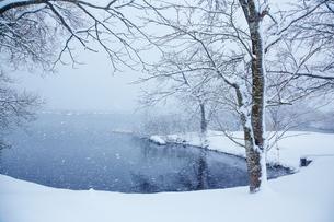 冬 雪の余呉湖の写真素材 [FYI04502261]
