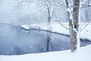 冬 雪の余呉湖の写真素材 [FYI04502262]