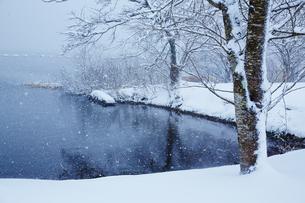 冬 雪の余呉湖の写真素材 [FYI04502263]