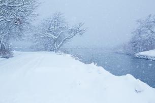 冬 雪の余呉湖の写真素材 [FYI04502264]