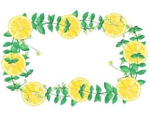 レモンとハーブのフレームのイラスト素材 [FYI04502298]